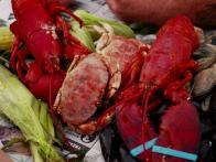 Seawater-Steamed Maine Lobster