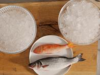 Keep Fish on Ice With Back Fins Facing Up